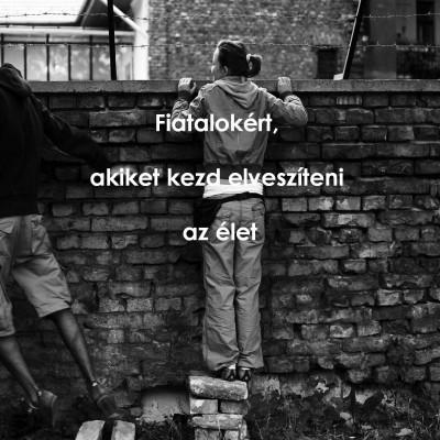 weblapkép